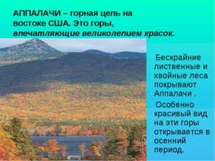 АППАЛАЧИ – горная цепь на востоке США. Это горы, впечатляющие великолепием кр
