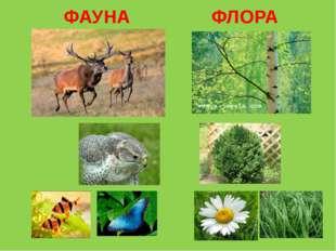 ФАУНА ФЛОРА