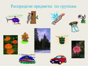Распредели предметы по группам.