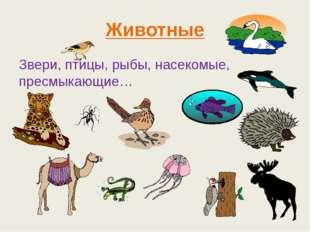 Животные Звери, птицы, рыбы, насекомые, пресмыкающие…