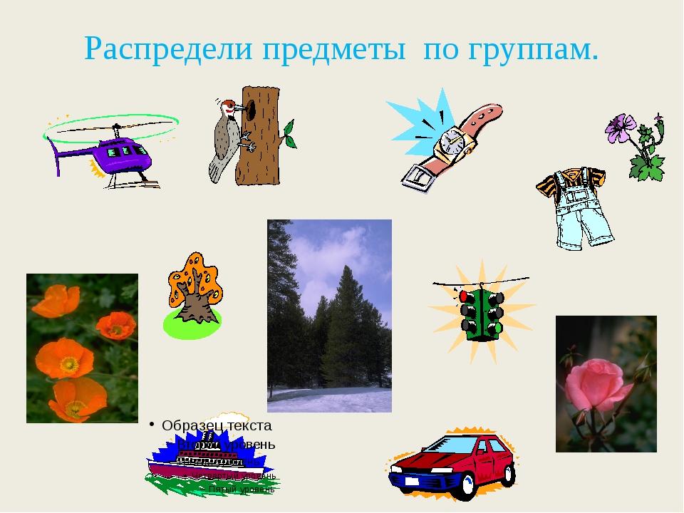 Предметы окружающего мира картинки