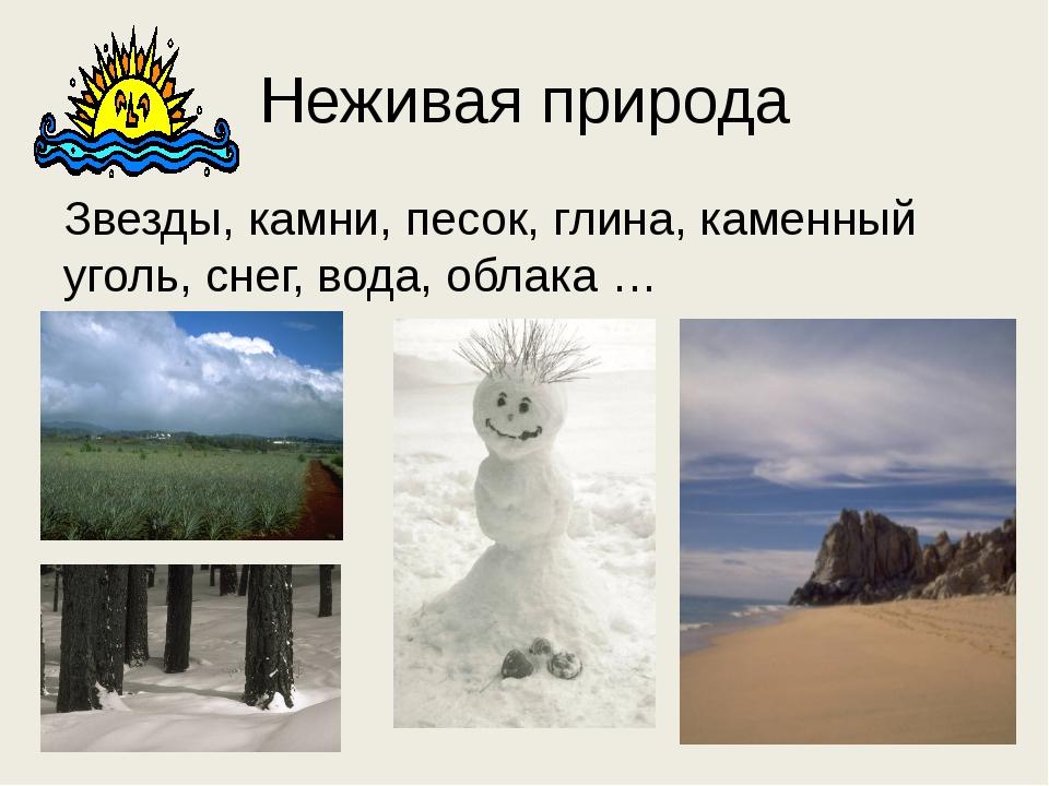 Неживая природа Звезды, камни, песок, глина, каменный уголь, снег, вода, обла...