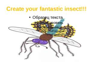 Create your fantastic insect!!!