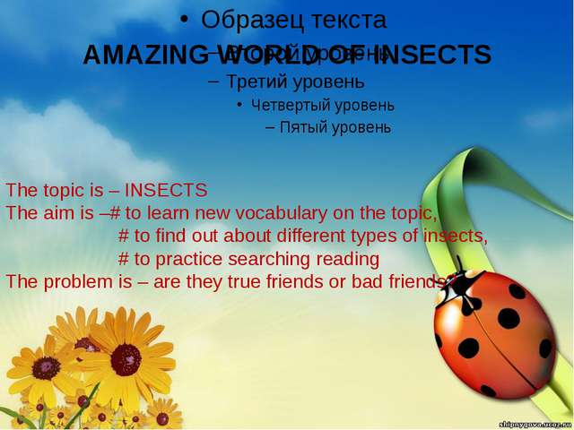 AMAZING WORLD OF INSECTS The topic is – INSECTS The aim is –# to learn new vo...