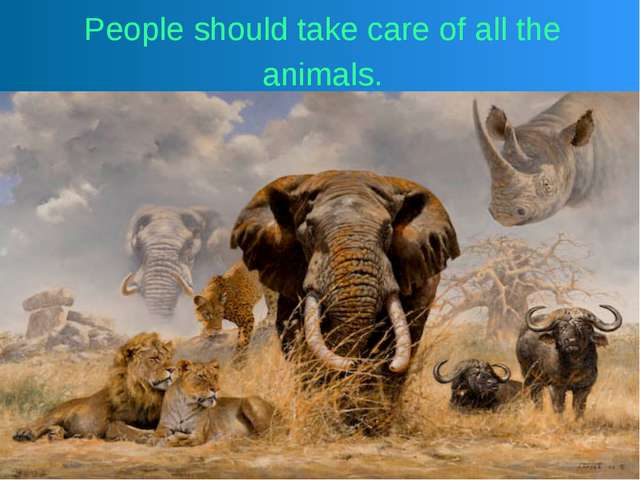 People should take care of all the animals.