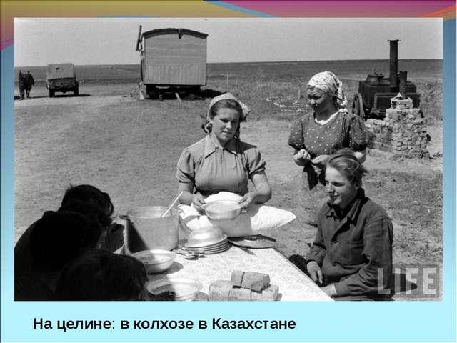 На целине: в колхозе в Казахстане
