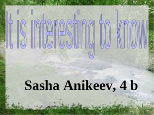 Sasha Anikeev, 4 b