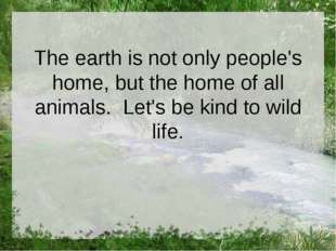 The earth is not only people's home, but the home of all animals. Let's be ki