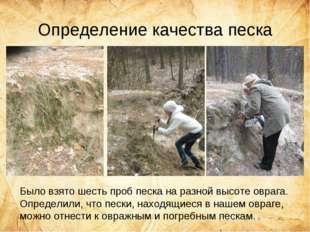 Определение качества песка Было взято шесть проб песка на разной высоте овраг