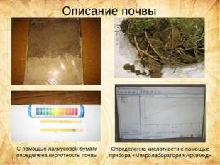 Описание почвы С помощью лакмусовой бумаги определена кислотность почвы Опред