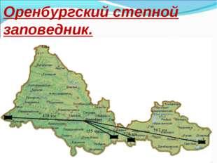 Оренбургский степной заповедник.
