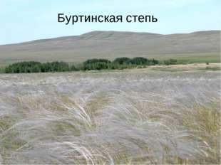 Буртинская степь