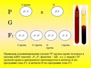 Примером кодоминирования служит IV группа крови человека в системе АВО: генот