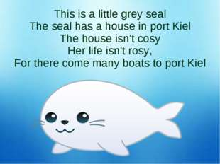 This is a little grey seal The seal has a house in port Kiel The house isn't