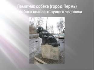 Памятник собаке (город Пермь) Эта собака спасла тонущего человека