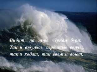 Видит, на море чёрная буря: Так и вздулись сердитые волны, так и ходят, так