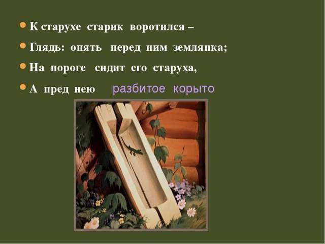 К старухе старик воротился – Глядь: опять перед ним землянка; На пороге сидит...
