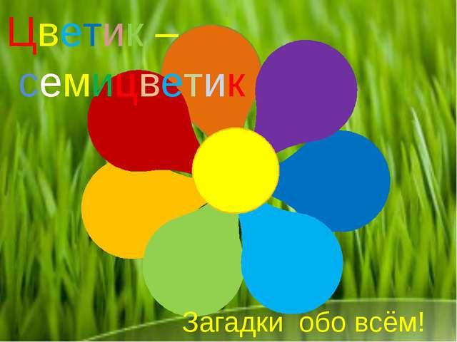 Цветик – семицветик Загадки обо всём!