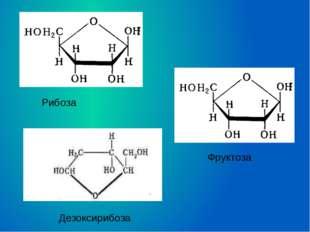 Дезоксирибоза Рибоза Фруктоза