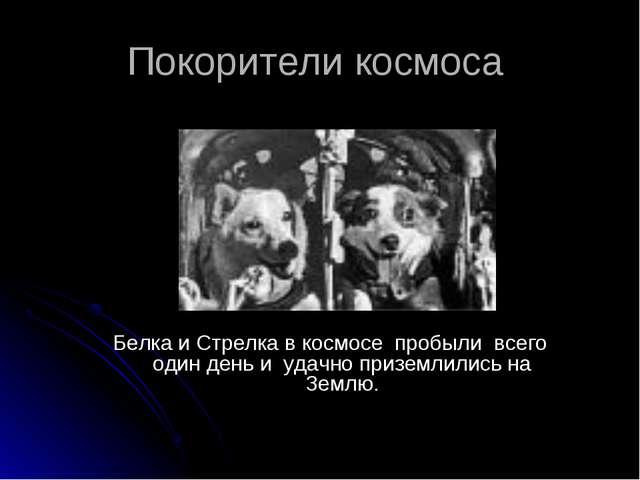Покорители космоса Белка и Стрелка в космосе пробыли всего один день и удачно...