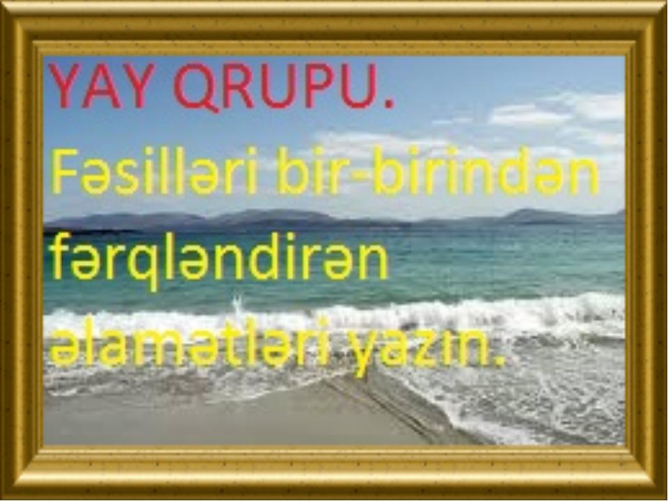Fəsilləri bir-birindən fərqləndirən əlamətləri yazın.