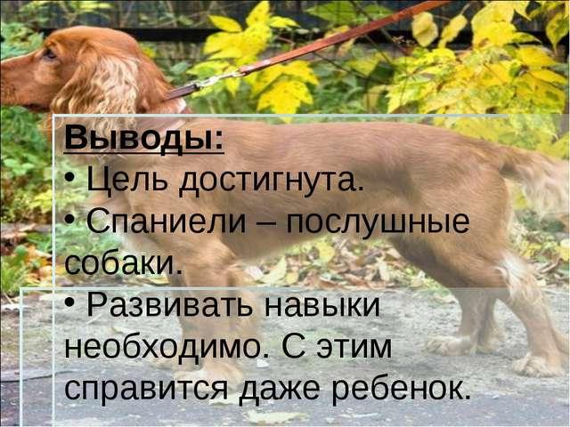 Выводы: Цель достигнута. Спаниели – послушные собаки. Развивать навыки необхо...