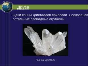 Друза Одни концы кристаллов приросли к основанию, остальные свободные огранен