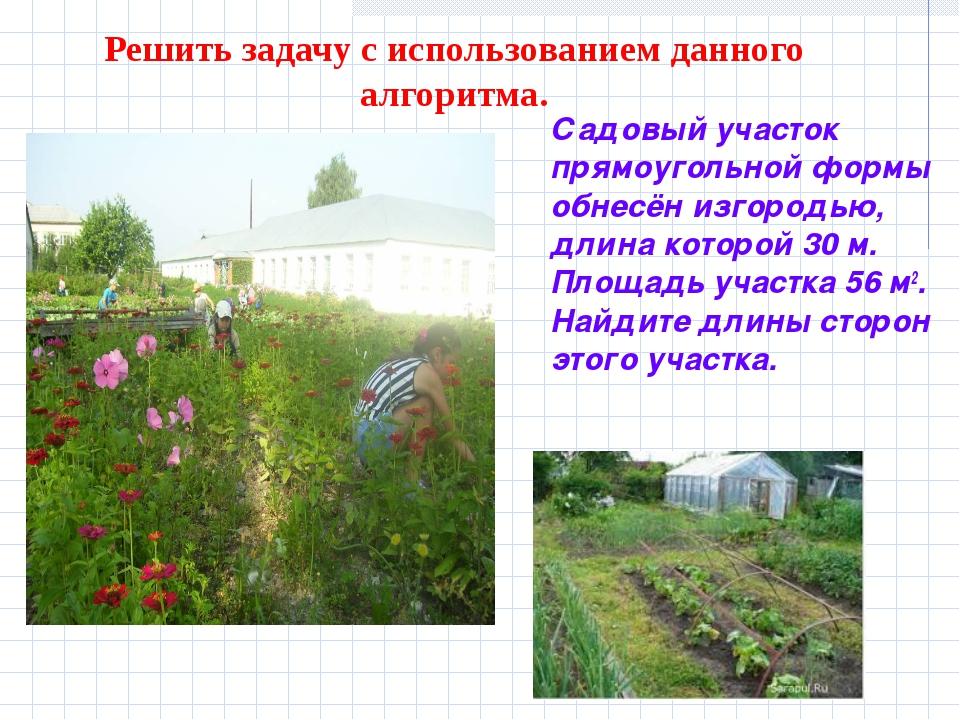 Решить задачу с использованием данного алгоритма. Садовый участок прямоугольн...