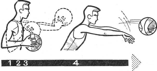 Техника передачи мяча в баскетболе