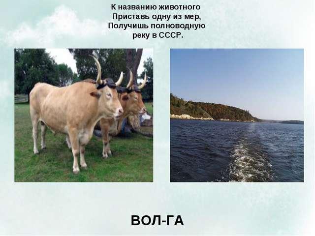 К названию животного Приставь одну из мер, Получишь полноводную реку в СССР....