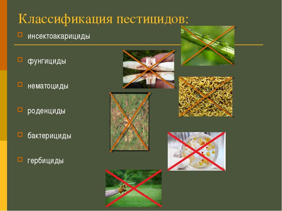 Классификация пестицидов: инсектоакарициды фунгициды нематоциды роденциды бак...