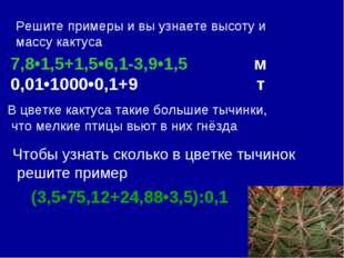 Решите примеры и вы узнаете высоту и массу кактуса 7,8•1,5+1,5•6,1-3,9•1,5 м