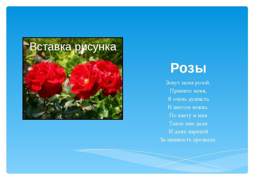 Розы Зовут меня розой. Примите меня, Я очень душиста И цветом нежна. По цвету...