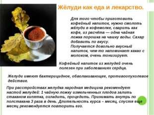 Жёлуди как еда и лекарство. Для того чтобы приготовить кофейный напиток, нужн