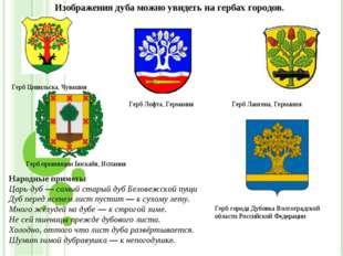 Изображения дуба можно увидеть на гербах городов. Герб Цивильска, Чувашия Ге