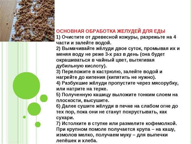 ОСНОВНАЯ ОБРАБОТКА ЖЕЛУДЕЙ ДЛЯ ЕДЫ 1) Очистите от древесной кожуры, разрежьте...