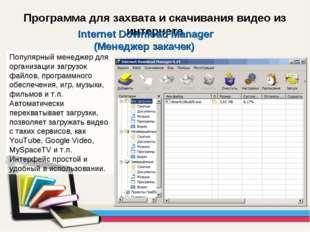 Программа для захвата и скачивания видео из интернета Популярный менеджер для