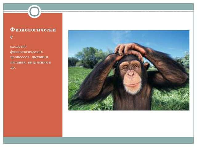 Физиологические сходство физиологических процессов: дыхания, питания, выделен...