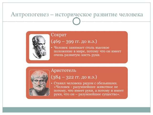 Антропогенез – историческое развитие человека