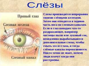 Слезы производятся непрерывно твоими слёзными железами. Затем они отводятся в