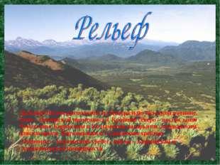 Дальний Восток расположен на Центрально-якутской равнине, Лено – Вилюйской н