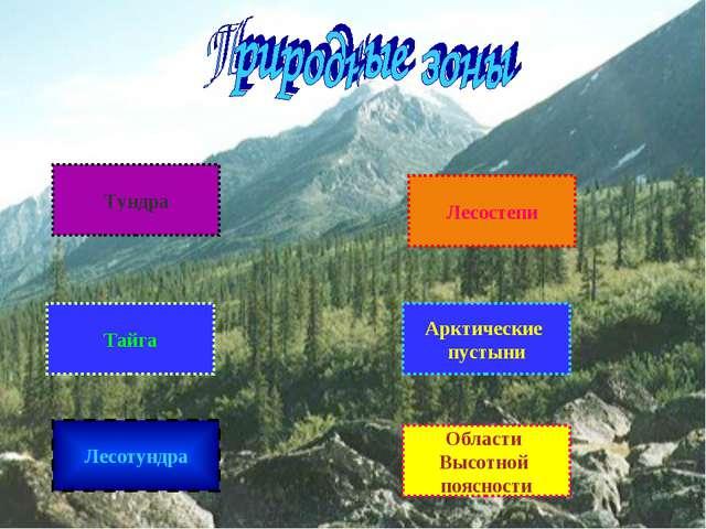 Тундра Тайга Лесотундра Области Высотной поясности Арктические пустыни Лесост...