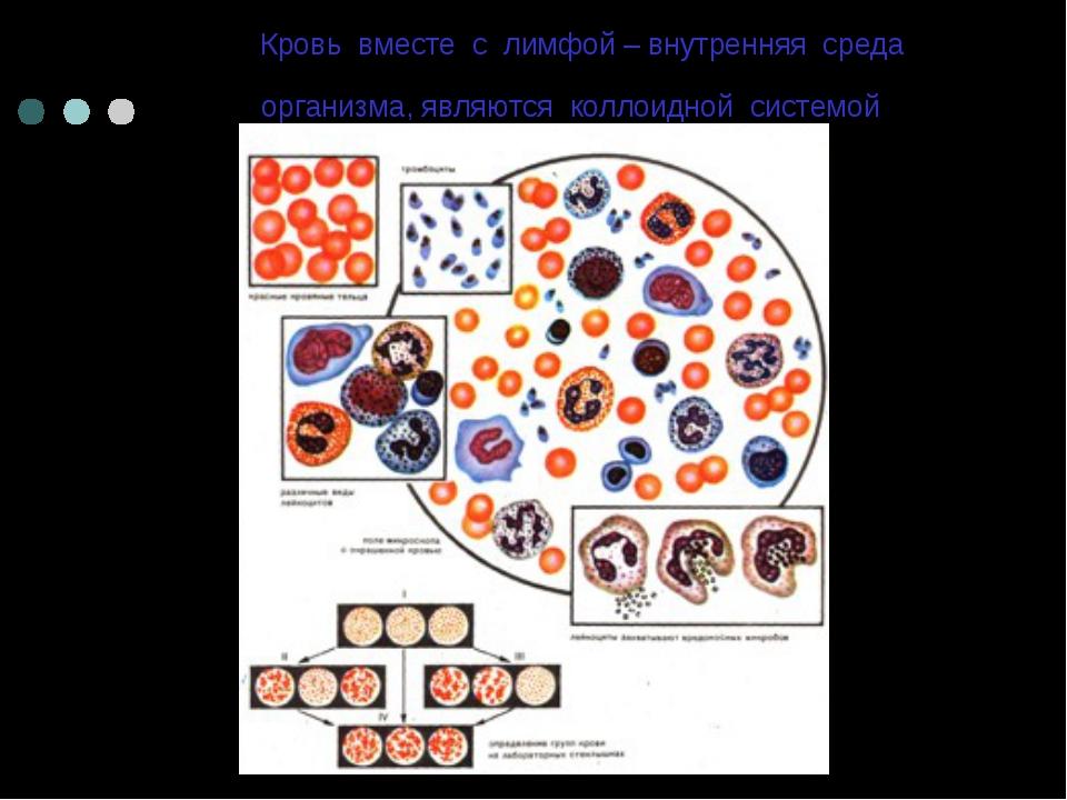 Кровь вместе с лимфой – внутренняя среда организма, являются коллоидной систе...