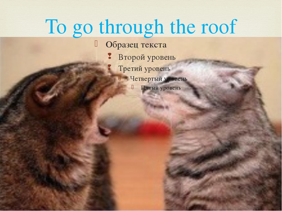 To go through the roof 