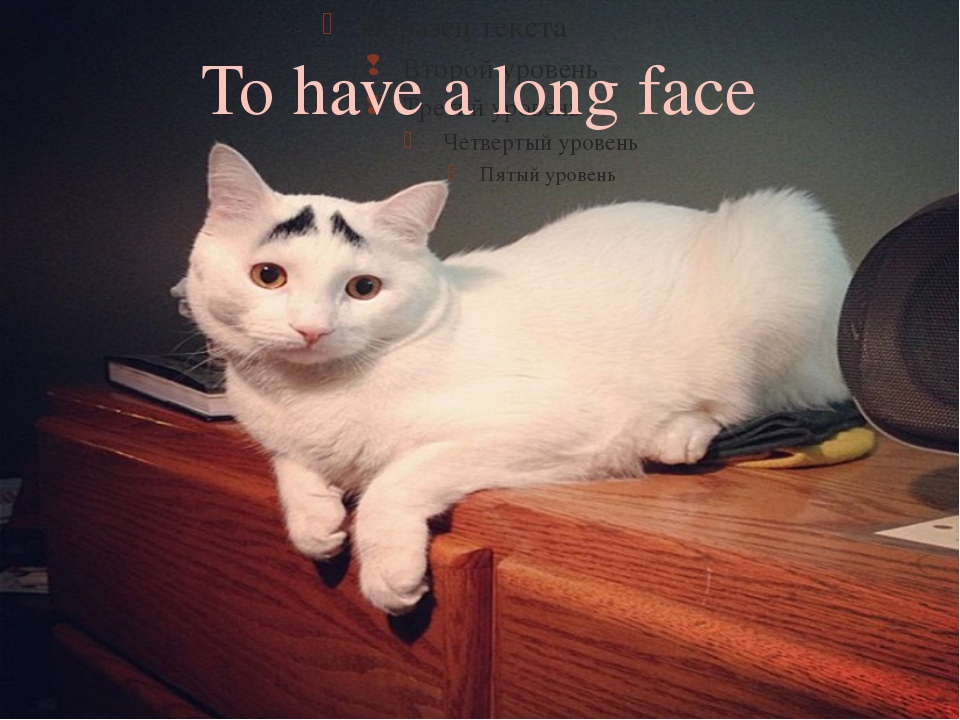 To have a long face 