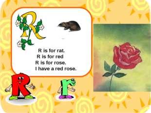 R is for rat. R is for red R is for rose. I have a red rose.