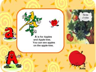 А is for Apples and Apple-tree. You can see apples on the apple-tree. Ants