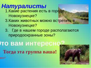 Натуралисты Какие растения есть в городе Новокузнецке? Каких животных можно в
