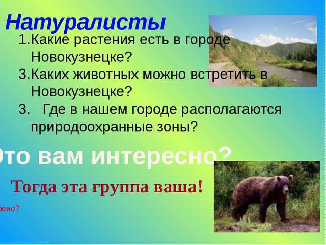 Натуралисты Какие растения есть в городе Новокузнецке? Каких животных можно в...