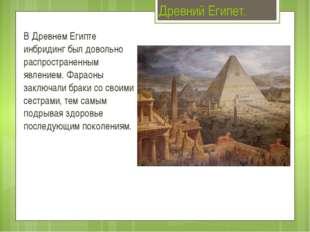 Древний Египет. В Древнем Египте инбридинг был довольно распространенным явле
